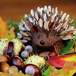 Latest_square_still-life-hedgehog-decoration-herbstdeko
