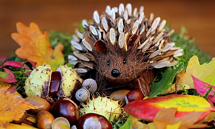 Slider_big_still-life-hedgehog-decoration-herbstdeko